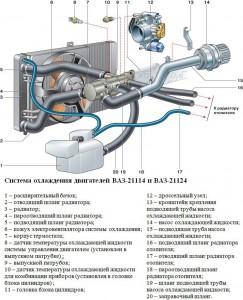 Устройство (схема) системы охлаждения двигателя