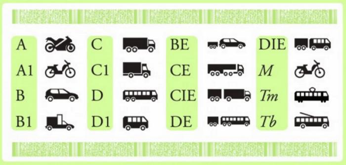 Пиктограммы для водительских прав, разработанных на Венской Конвенции